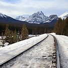 Tracks in Banff by zumi