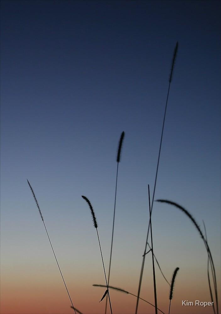 Dawn - Cowan, NSW by Kim Roper