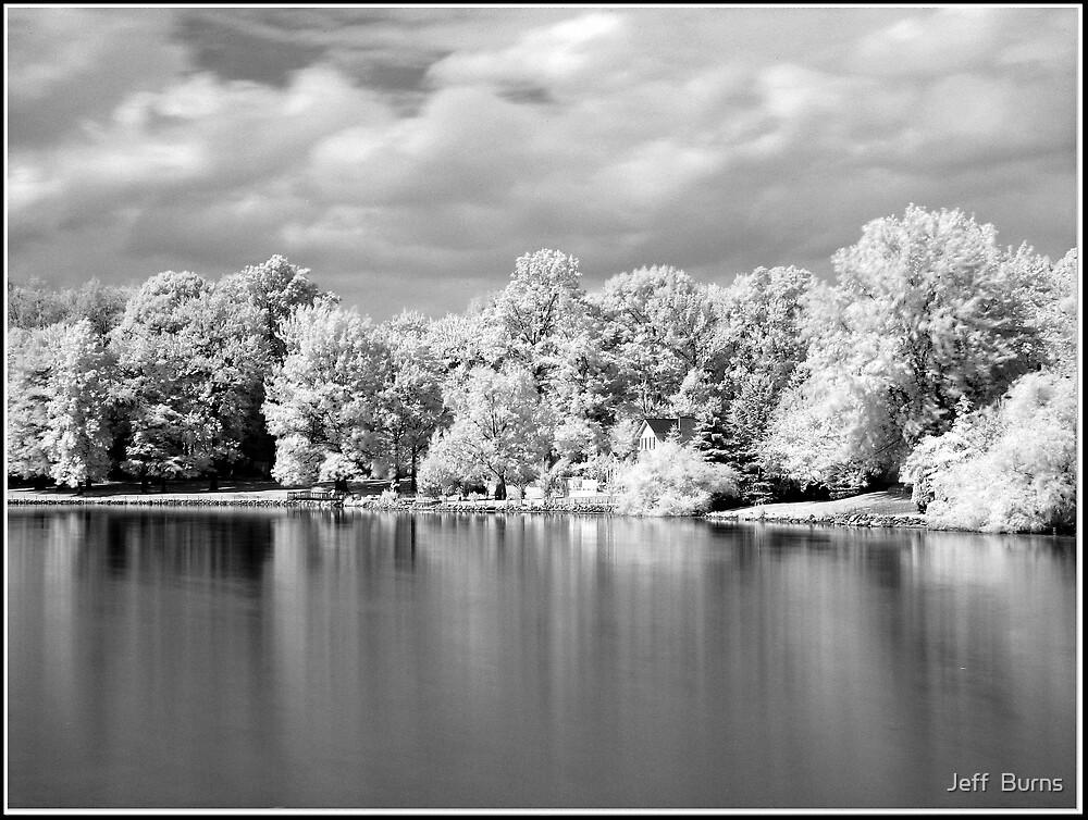 The Lake by Jeff  Burns