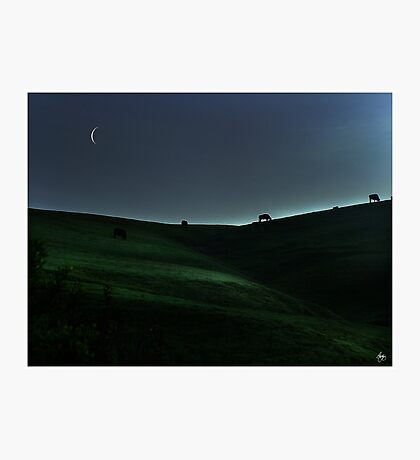 Sliver of Light on the Pasture Photographic Print