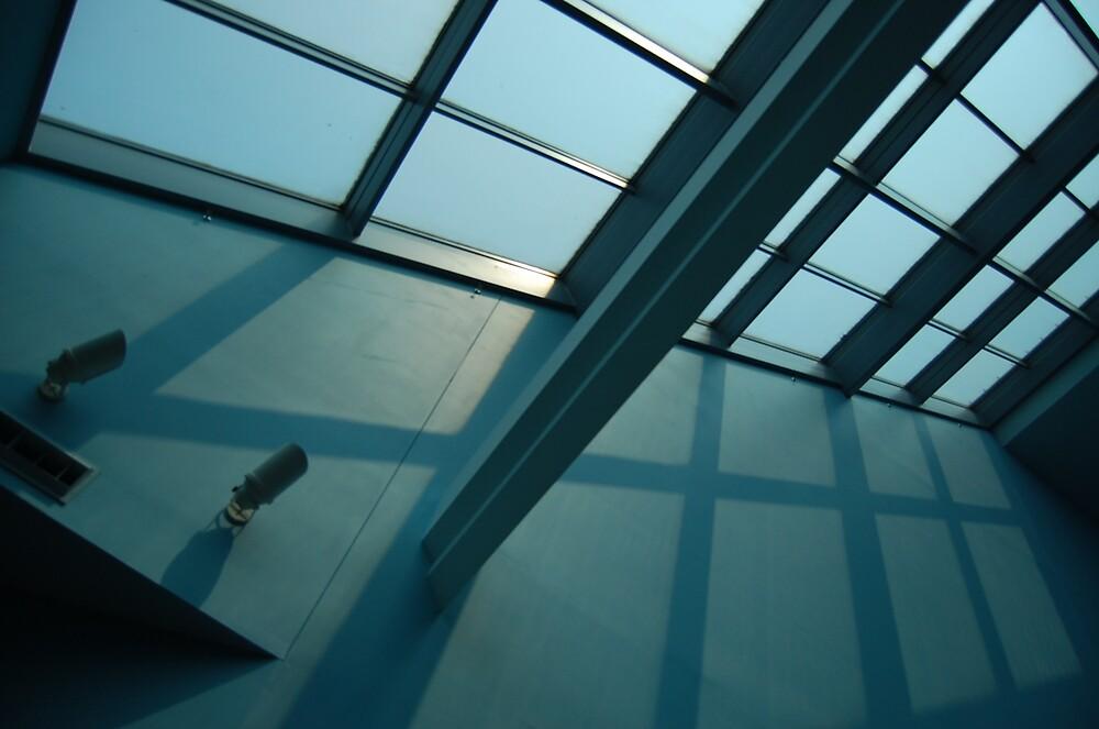 blue shadows by briannarae