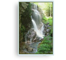 Avalanche Waterfalls, NH Canvas Print