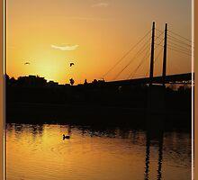 Danube Moods...  by Zeanana