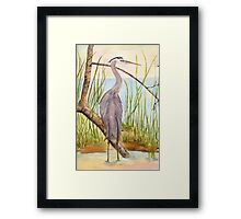 Great Blue Heron- Morning Reflections Framed Print