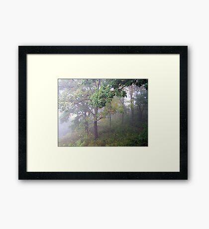 Foggy Shenandoah Mountain Top Framed Print