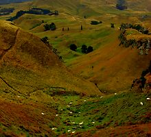 Moutons dans l'automne d'or by K.D. Hemi