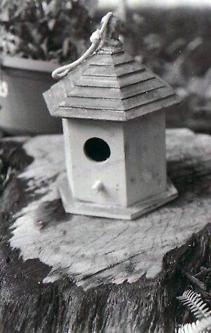 A Lonely Bird House by Rebecca Borrego