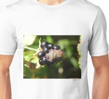 Brown Marmorated Stink Bug Unisex T-Shirt