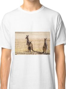 At the fence Classic T-Shirt
