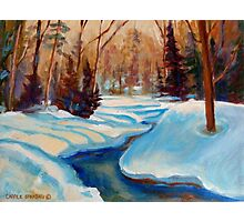CANADIAN SCENERY BEAUTIFUL WINTER LANDSCAPE PAINTINGS BY CANADIAN ARTIST CAROLE SPANDAU Photographic Print