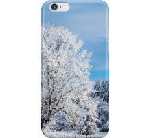 Winter Wonderland! iPhone Case/Skin