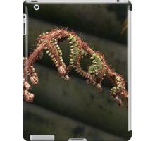 A new fern is born......! iPad Case/Skin