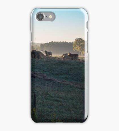 Early Morning Cows In The Countryside iPhone Case/Skin
