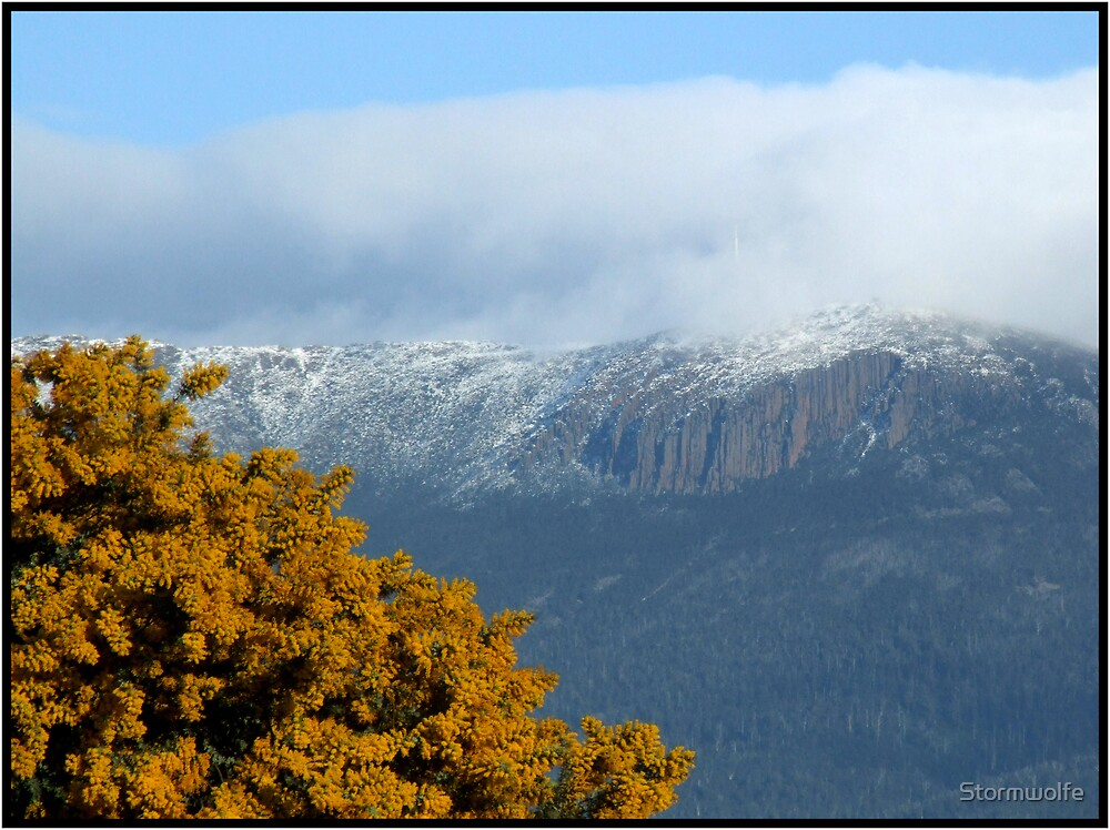 Frosted Mt. Wellington by Stormwolfe