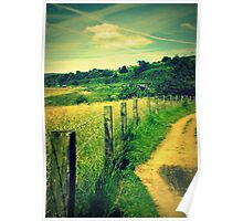 Hedge View Poster