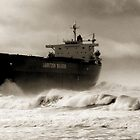 Pasha Bulker by monkeyfoto