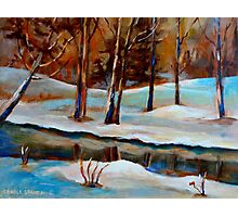WINTER TREES NEAR RIVER CANADIAN ART CANADIAN PAINTING BY CANADIAN ARTIST CAROLE SPANDAU Photographic Print