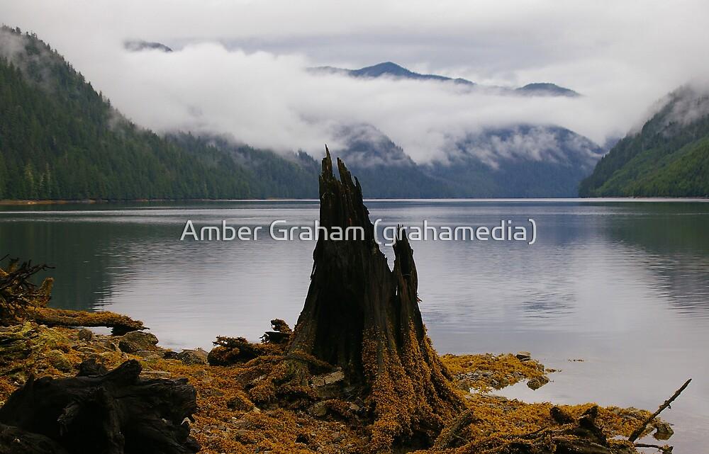 Serenity by Amber Graham (grahamedia)