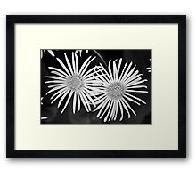Bright Burst Framed Print