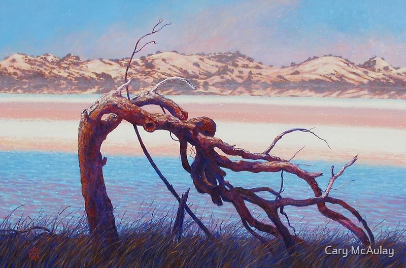 The Sentinel - Pink Lake Western Australia by Cary McAulay