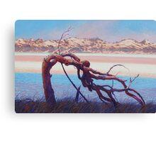 The Sentinel - Pink Lake Western Australia Canvas Print