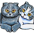 Scottish Fold Pair by offleashart