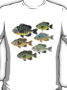 Sunfish Group T-Shirt