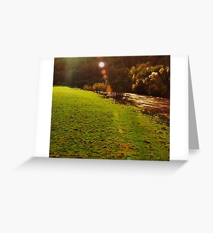 Grass and Lake Greeting Card
