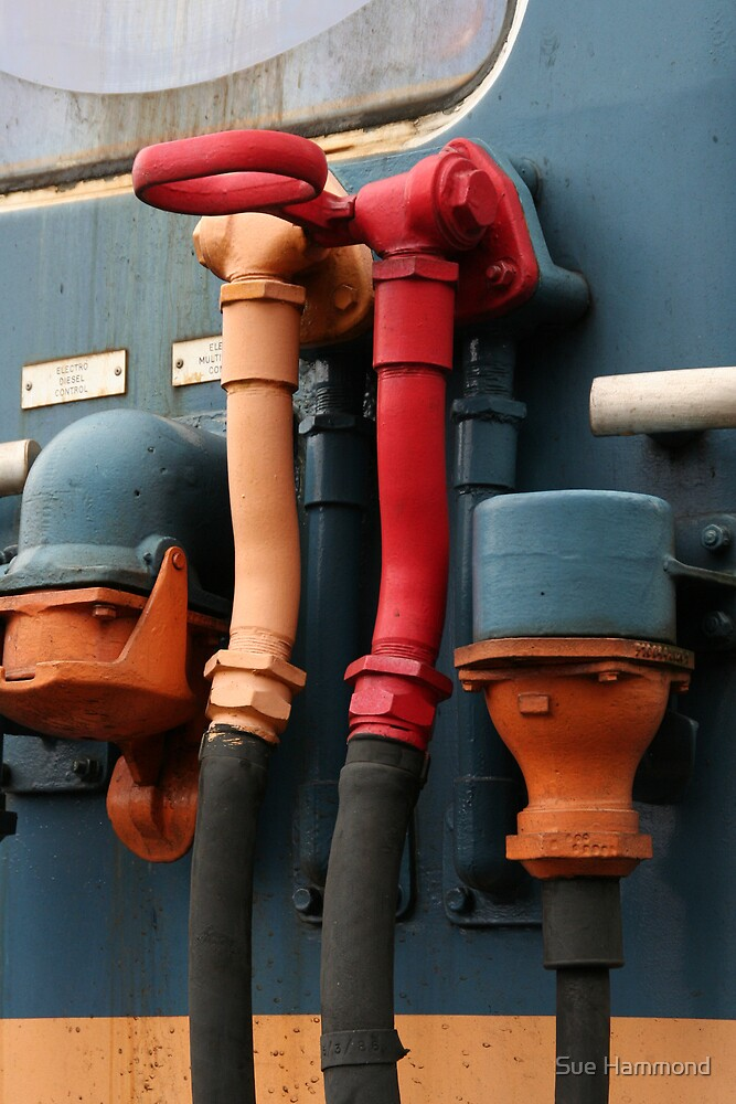 Railway downpipes by Sue Hammond