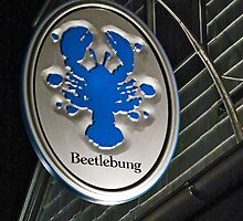 Beetlebung by phil decocco