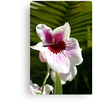 Paint Spattered Orchid Canvas Print