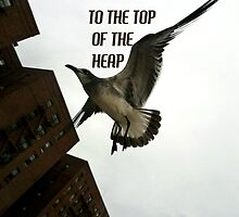 To The Top Of The Heap by smilku
