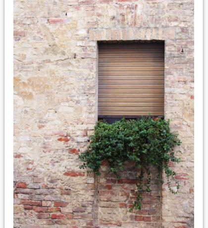 Siena window Sticker