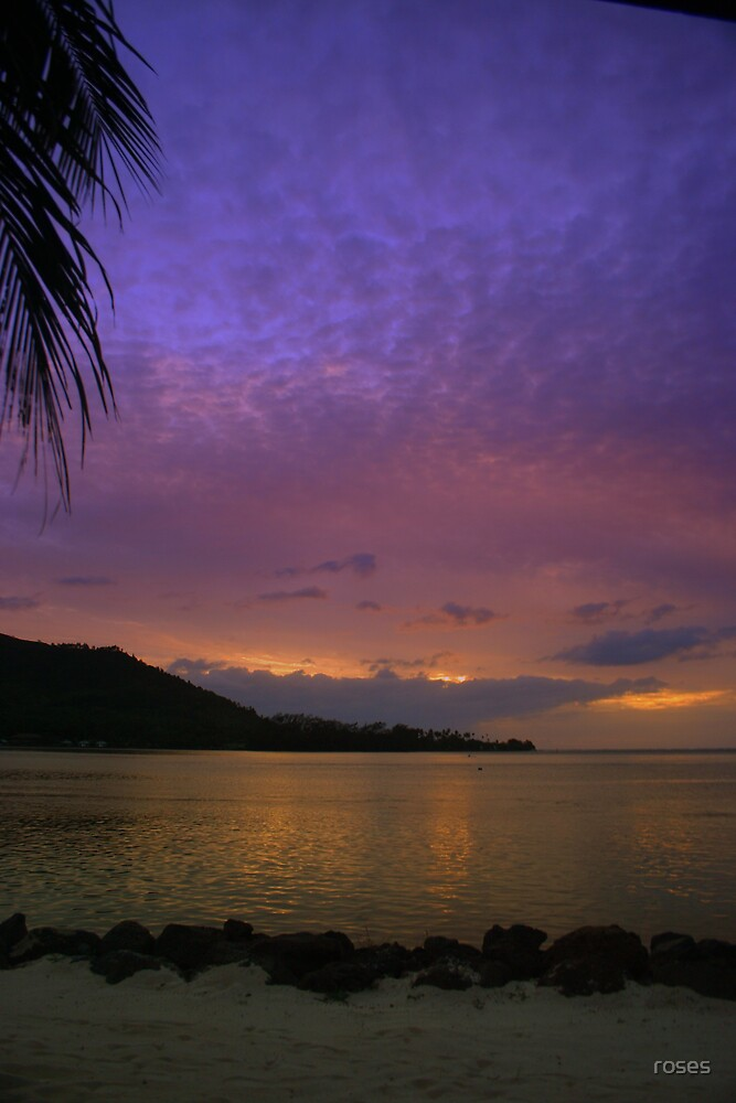Moorea by roses