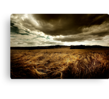 Children of the Corn. Canvas Print