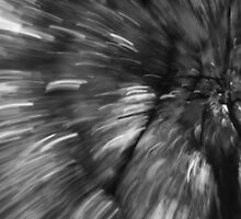 Black and white motion blur by The RealDealBeal
