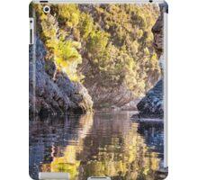 Davey Gorge iPad Case/Skin