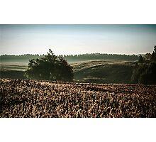 Vintage Autumn Morning Landscape Photographic Print