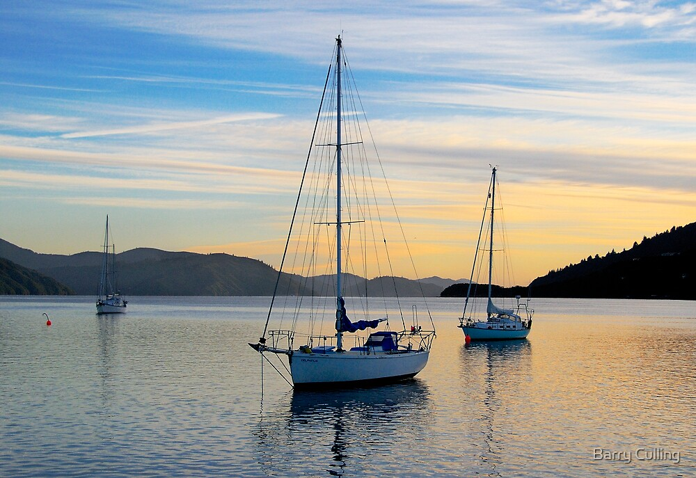 Picton Sunrise by Barry Culling