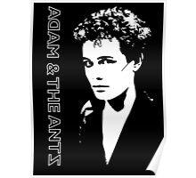 Adam and the Ants - Adam Ant - Punk 1977 Poster