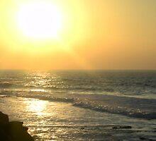 sea to shining sea by karen4u64