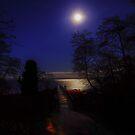 Pre-Dawn Richmond Beach Saltwater Park by Ian Phares