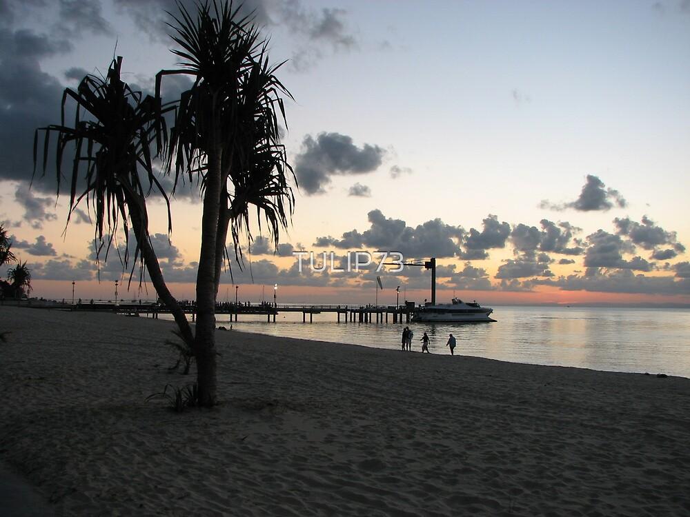 SUNSET ON TANGA by TULIP73