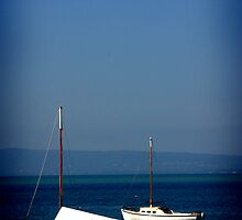 Sorrento Boats, Mornington Peninsula. Australia by laurajayne