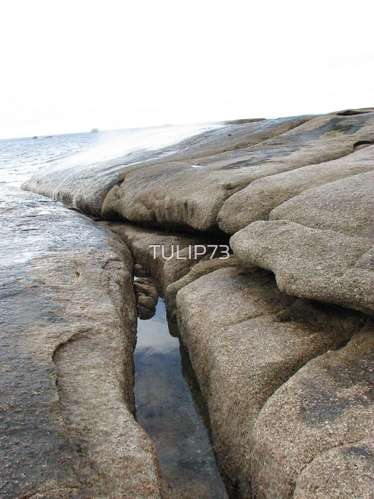 ROCKS  by TULIP73