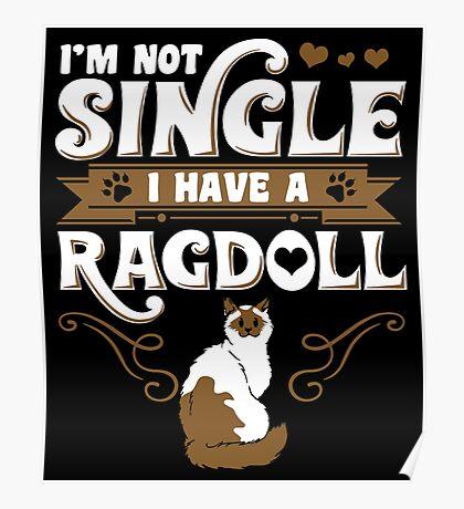 Ragdoll Cat Animal Kitten Poster