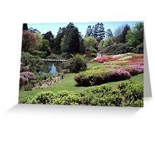 Rhododendron Gardens, Olinda, Victoria Greeting Card