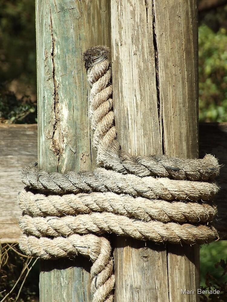 Rope by Mari  Benade