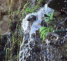 Waterfall by Mari  Benade