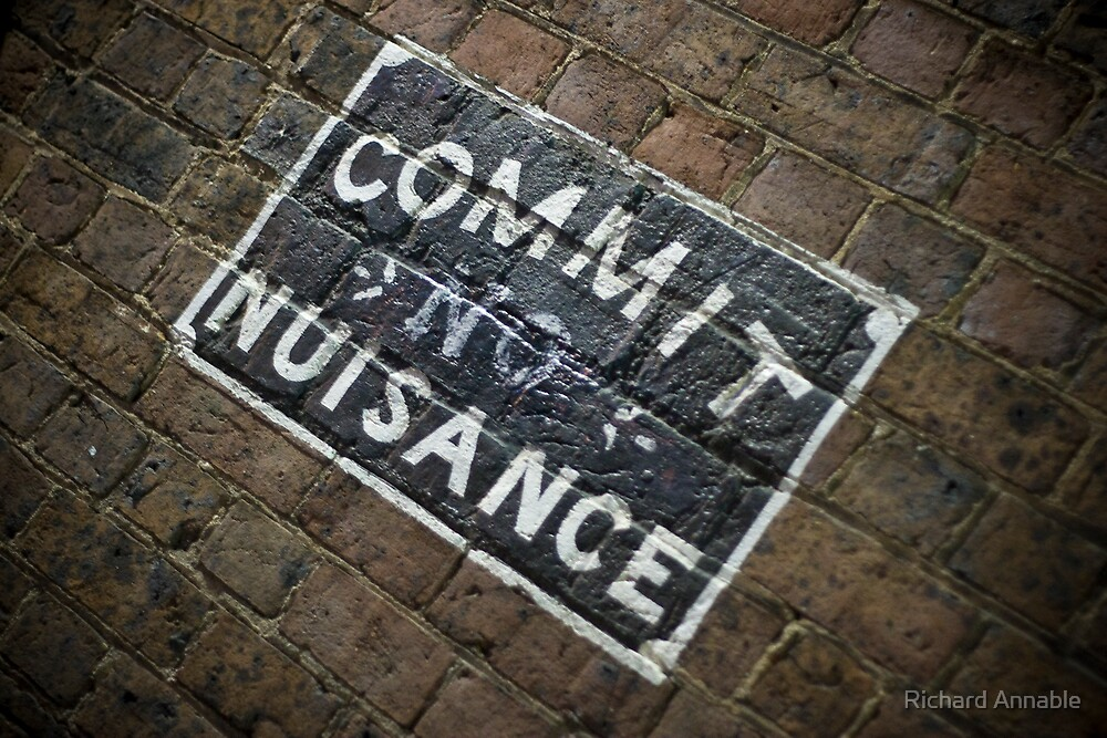 Commit no nuisance by Richard Annable
